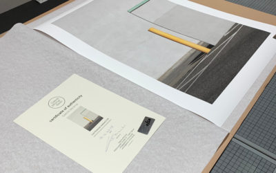 The art of paper and pigments