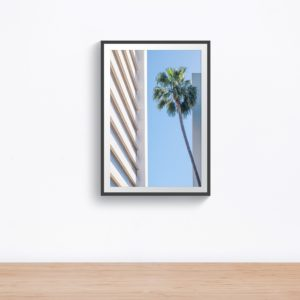 White building with palmtree